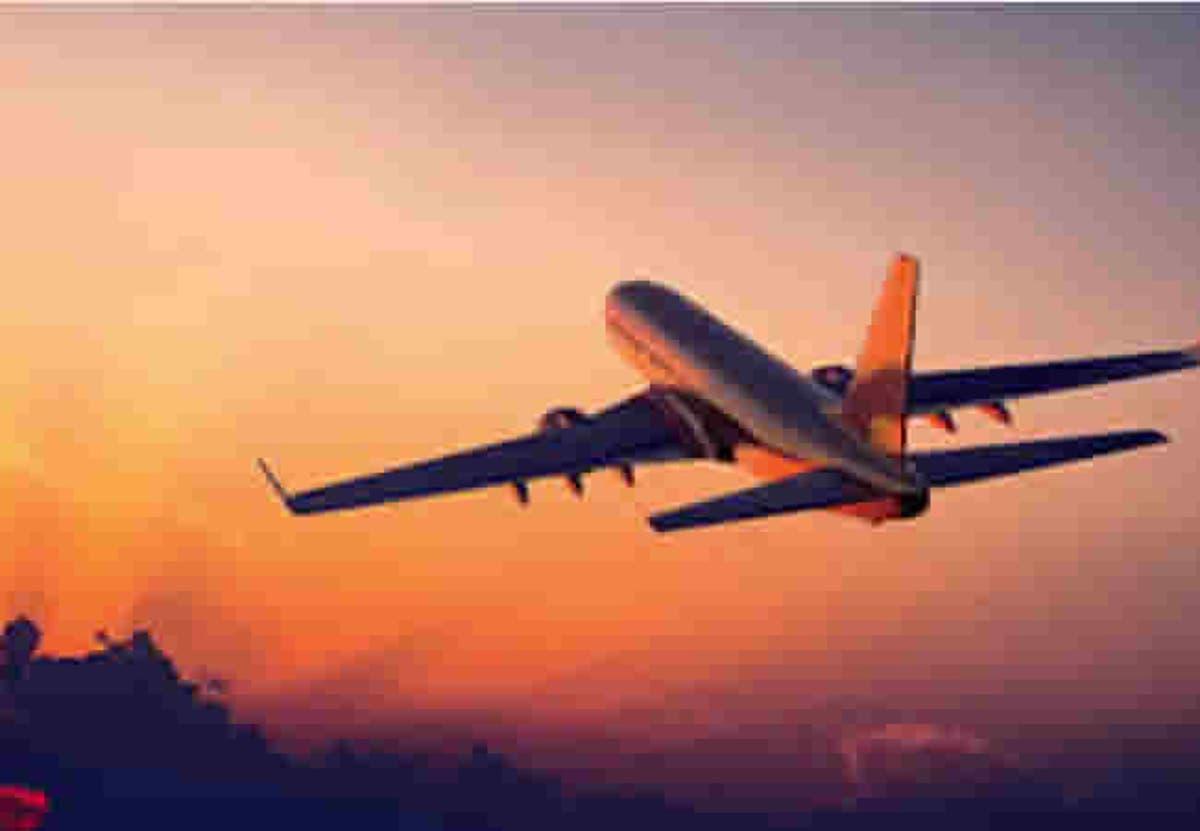 Image result for Airline bans suicidal passenger for life, fines her $106,000