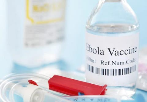 Disregard rumour of new Ebola case in Nigeria —FG