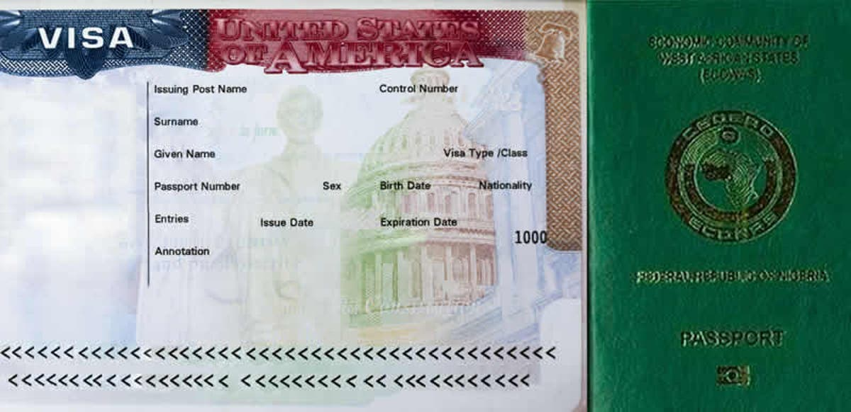 Image result for american visa