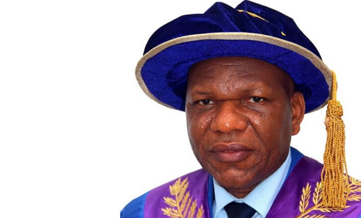 Prof. Eyitope Ogunbodede, Vice Chancellor, OAU. Photo: Punch Newspaper